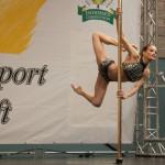 Deutsche Meisterin 2015 Pole Dance Yvonne Haug